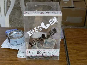 boxP1030540.jpg